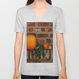 Gourds On A Windowsill Unisex V-Neck