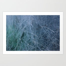 Fishnets Art Print