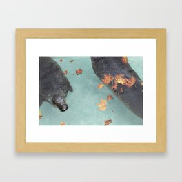 Wup-Wup-Wup Framed Art Print