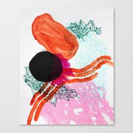 Vermillion Lines Canvas Print