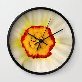 Painted Daffodil Macro Wall Clock