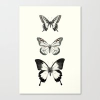butterflies Canvas Prints featuring Butterflies // Align by Amy Hamilton