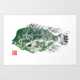 Rio Grande Cichlid green Art Print