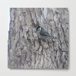 """What a """"tweet"""" little bird!!! Metal Print"""
