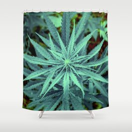 Twisted Frosty Weed Shower Curtain