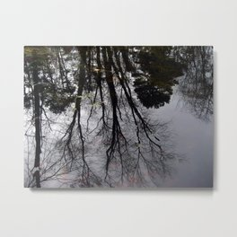 Echos In Eden Metal Print