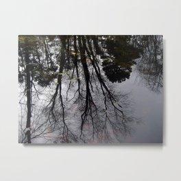 Echos In Eden Metal Print