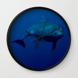 Smiling Dolphin Wall Clock