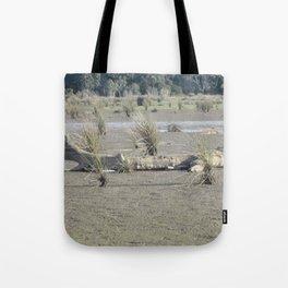 Log in dry marsh Tote Bag