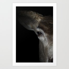 Muley Art Print