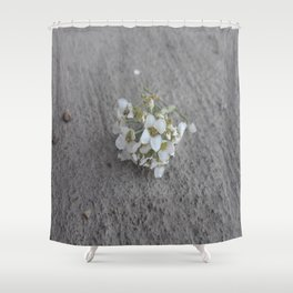 Petty in white. Shower Curtain