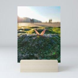 Absorb Mini Art Print