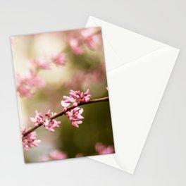 Beautiful Light Stationery Cards