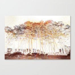 Abstract Monterey Cypress In Infrared with Tint Overlay Canvas Print