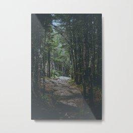 The Path - Wildcat Mountain - Jackson New Hampshire Metal Print