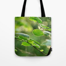 Embrace Nature Tote Bag