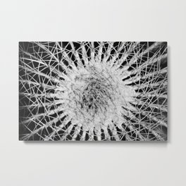 Geometric Cactus Spines in Black and White Metal Print