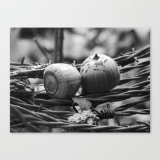 still life with barbed wire Canvas Print