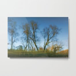 Dreams Of The Forest Metal Print