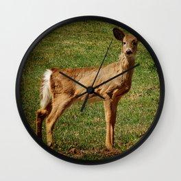 Speaking Softly- Deer Wall Clock