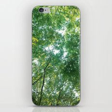 forest 012 iPhone & iPod Skin