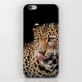 Leopard portrait on dark background iPhone Skin
