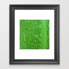 summer raindrops Framed Art Print