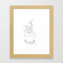 Potted Jade Framed Art Print