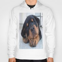 rottweiler Hoodies featuring Riley  🐾  The Rottweiler Puppy  🐾 by Barrier _S_D