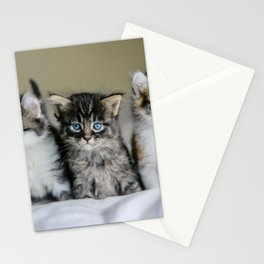 Cats Make Me Happy So Much Stationery Cards