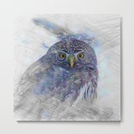 Artistic Animal Owl Metal Print