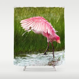Roseate Spoonbill 2 Shower Curtain