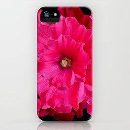 BLACK FUCHSIA-PINK  DOUBLE  HOLLYHOCK FLOWERS GARDEN iPhone Case