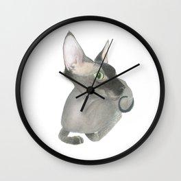 The Fuzzy Sphynx Wall Clock