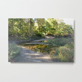 Where Canoes and Raccoons Go Series, No. 21 Metal Print