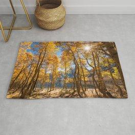 Desktop Wallpapers Rays of light California USA June Lake Nature Autumn Trees Rug