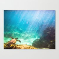 under the sea Canvas Prints featuring Under by Chase Zalewski