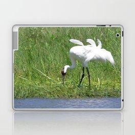 Whooping Crane Laptop & iPad Skin