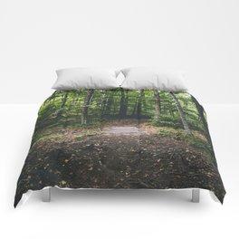 Killington, VT Comforters