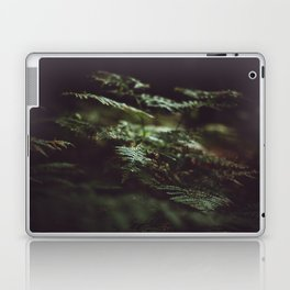 Fern in the shadow Laptop & iPad Skin