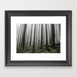 Tall Trees Framed Art Print
