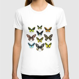 Butterfly012_Ornithoptera Set1 on White Background T-shirt