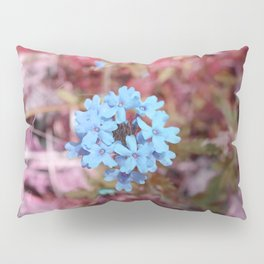 Blue Flowers, Red Thorns ~ Cedars of Lebanon, Tennessee Pillow Sham