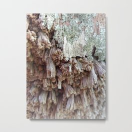 Texture and time Metal Print