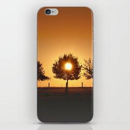 Beautiful Nature Panorama iPhone Skin