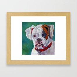 Boxer Dog Portrait Framed Art Print