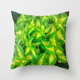Yellow Green Coleus Tropical Throw Pillow
