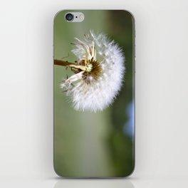 Don't Blow Away iPhone Skin