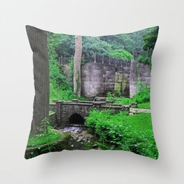 The Echoes of Our Souls Throw Pillow