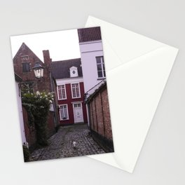 Lonely white cat in the street I Sunset in Lier, Belgium I Vintage street photography Stationery Cards